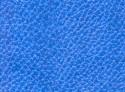 67(25) Голубой